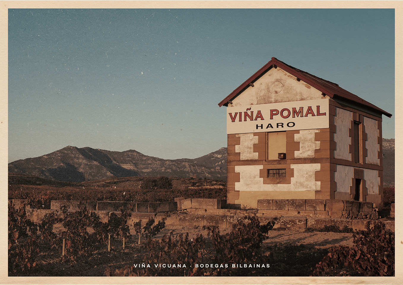 Greetings from Viña Pomal